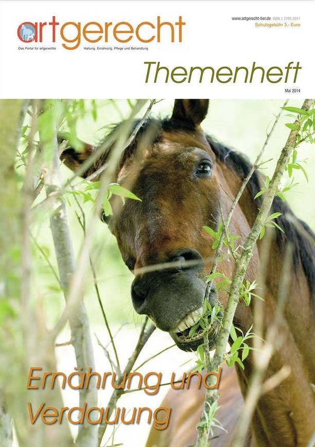 Themenheft Mai 2014